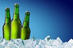 Botellas de cerveza en el hielo Imágenes de archivo libres de regalías