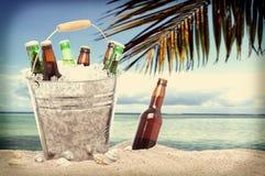 Botellas de cerveza en un cubo de hielo Instagram tropical Imagenes de archivo