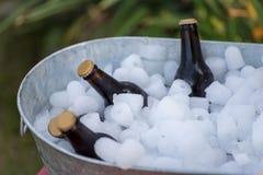 Botellas de cerveza que se sientan en cubo de hielo galvanizado al aire libre en la comida campestre imagen de archivo libre de regalías