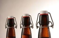 Botellas de cerveza superiores del oscilación Imagen de archivo libre de regalías