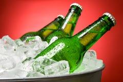 Botellas de cerveza verdes Foto de archivo
