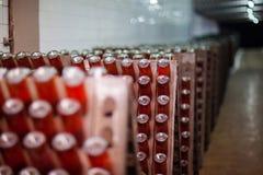 Botellas de Champán en el sótano Imagen de archivo