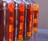 Botellas de coñac en fila Foto de archivo libre de regalías
