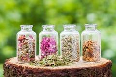 Botellas de cristal con las hierbas curativas en tocón de madera Foto de archivo libre de regalías