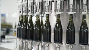 Botellas de cristal en la línea automática del transportador en la fábrica del champán o del vino Planta para embotellar las bebi metrajes