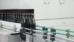 Botellas de cristal en la línea automática del transportador en la fábrica del champán o del vino Planta para embotellar las bebi almacen de metraje de vídeo