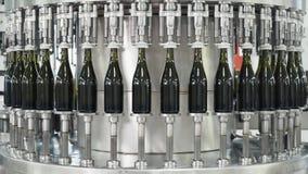 Botellas de cristal en la l?nea autom?tica del transportador en la f?brica del champ?n o del vino Planta para embotellar las bebi metrajes
