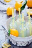 Botellas de la limonada de la cesta Fotografía de archivo libre de regalías