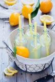 Botellas de la limonada de la cesta Imagen de archivo