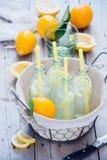 Botellas de la limonada de la cesta Foto de archivo libre de regalías