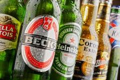 Botellas de marcas globales clasificadas de la cerveza imagen de archivo libre de regalías