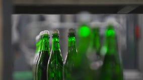 Botellas de movimiento del color verde a lo largo del transportador metrajes