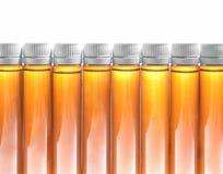 Botellas de nutrición de la aptitud Foto de archivo libre de regalías