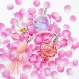 Botellas de perfume con los pétalos de la flor en el fondo blanco Perfumería, cosméticos, colección de la fragancia foto de archivo libre de regalías