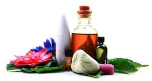 Botellas de petróleo herbarias Foto de archivo libre de regalías