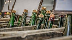 Botellas de sidra en cajas Imágenes de archivo libres de regalías