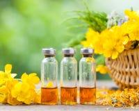 Botellas de tratamiento curativo de las plantas y de hierbas sanas Imagenes de archivo