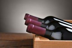 Botellas de vino en caso de que Imagen de archivo libre de regalías