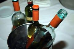 Botellas de vino en un refrigerador en un restaurante Imagen de archivo libre de regalías