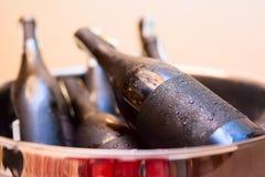 Botellas de vino frías heladas en el compartimiento de plata imagen de archivo libre de regalías