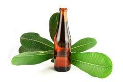 Botellas de vino marrón y hojas. Imagen de archivo