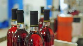 Botellas de vino rojo en la fábrica Llegamos con la banda transportadora almacen de metraje de vídeo