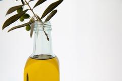 Botellas del aceite de oliva en el fondo blanco Fotos de archivo