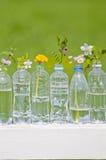 Botellas del ANIMAL DOMÉSTICO, Foto de archivo