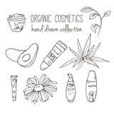 Botellas del cosmético del vector Ejemplo orgánico de los cosméticos Artículos del cuidado de piel del garabato Sistema dibujado  Fotos de archivo