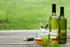 Botellas del vino blanco Imagen de archivo