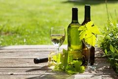 Botellas del vino blanco Fotos de archivo