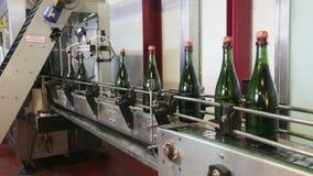 Botellas del vino espumoso almacen de video