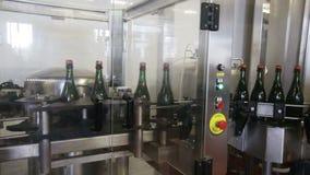 Botellas del vino espumoso metrajes