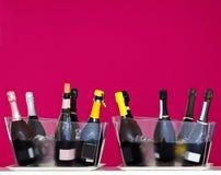 Botellas del vino espumoso en dos cubos de hielo transparentes en una degustación de vinos Fondo púrpura de la pared Imagen de archivo libre de regalías