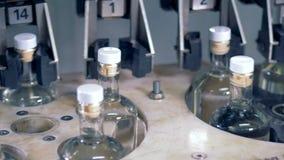 Botellas llenas en un transportador, cierre para arriba almacen de video