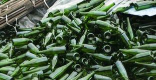 Botellas verdes enteras y quebradas, montaña de la mentira en el pavimento Concepto: reciclaje de residuos, disposición de la bas imagenes de archivo