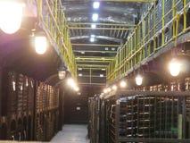 Botellas viejas de vino en filas en bodega Filas de muchas botellas de vino en almacenamiento del sótano del lagar Textura hermos Fotos de archivo