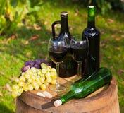 Botellas y uvas de vino Imagen de archivo libre de regalías