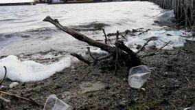 Botellas y vidrios plásticos en la playa arenosa Agua sucia en la cual flotadores zllichny de la basura Espuma blanca en la orill metrajes