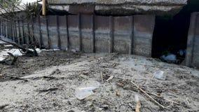 Botellas y vidrios pl?sticos en la playa arenosa Agua sucia en la cual flotadores zllichny de la basura Espuma blanca en la orill metrajes