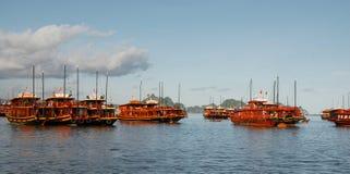 Boten bij Baai Halong in Vietnam Stock Fotografie