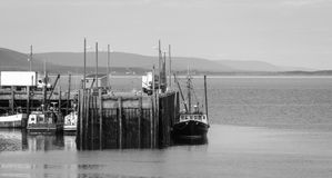 Boten in de haven at low tide in Digby, Nova Scotia Stock Afbeelding