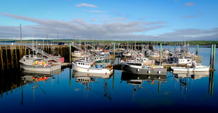 Boten in de haven at low tide in Digby, Nova Scotia Stock Fotografie