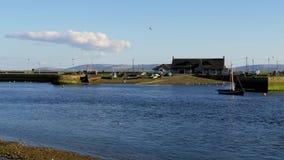 Boten in de haven van Galway Claddagh stock video