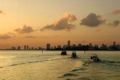 Boten in Miami bij zonsondergang Stock Afbeelding