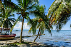 Boten op Caraïbisch strand, Guatemala Stock Fotografie