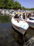 Boten op de kust van een lagune worden geparkeerd die Stock Foto's