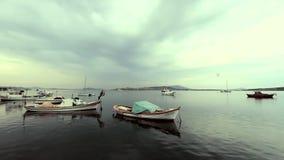 Boten in stille haven stock videobeelden