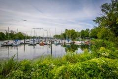 Boten in Washington Sailing Marina, langs George Washing royalty-vrije stock foto's