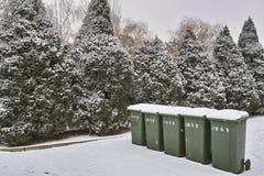Botes de basura y cipreses Fotografía de archivo libre de regalías